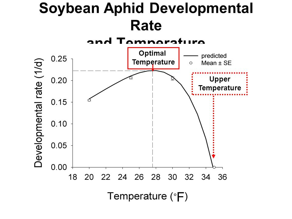 Soybean Aphid Developmental Rate and Temperature Upper Temperature Optimal Temperature F