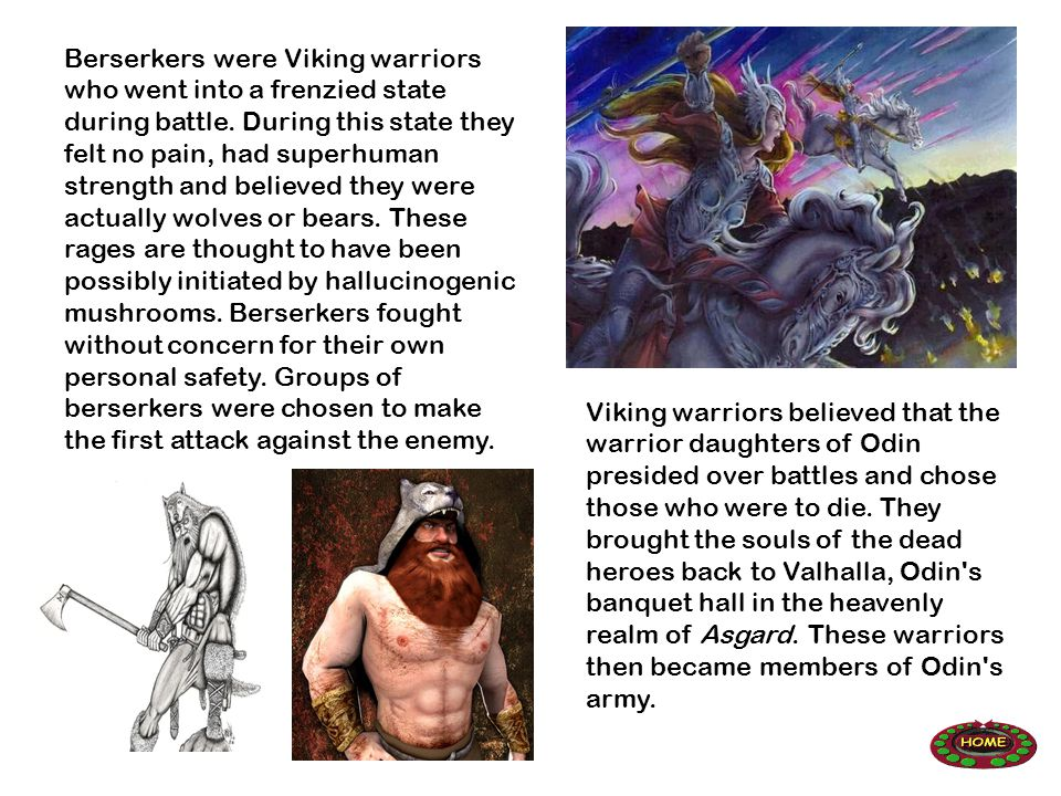 Berserkers were Viking warriors who went into a frenzied state during battle.