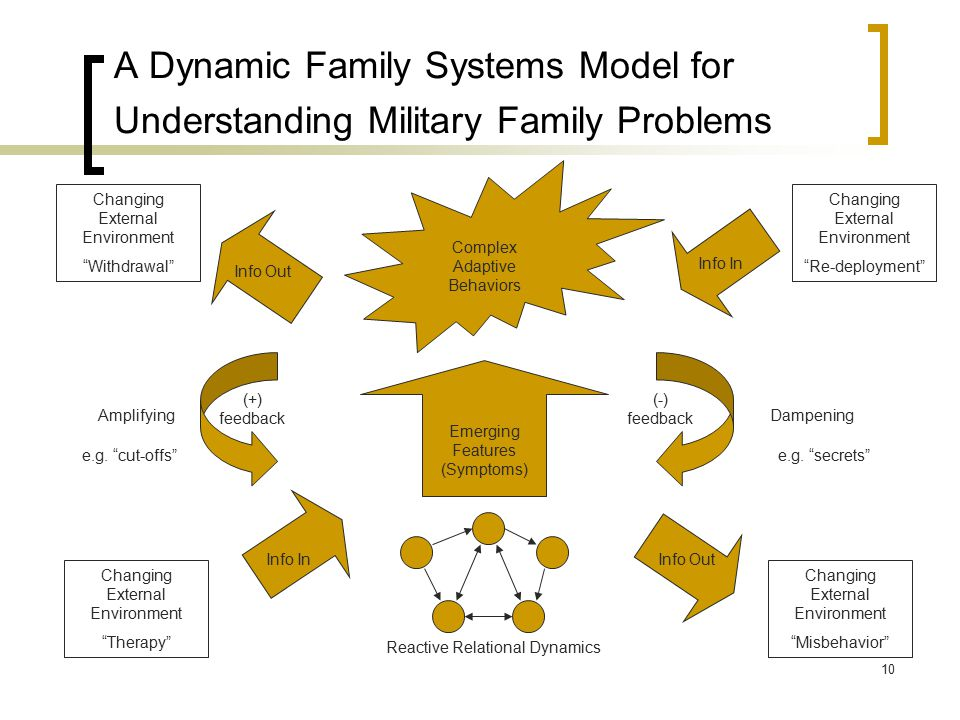 """A Dynamic Family Systems Model for Understanding Military Family Problems Emerging Features (Symptoms) Changing External Environment """"Therapy"""" Changin"""