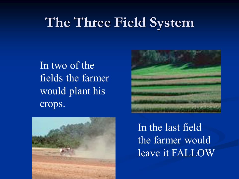 The Three Field System In two of the fields the farmer would plant his crops. In the last field the farmer would leave it FALLOW