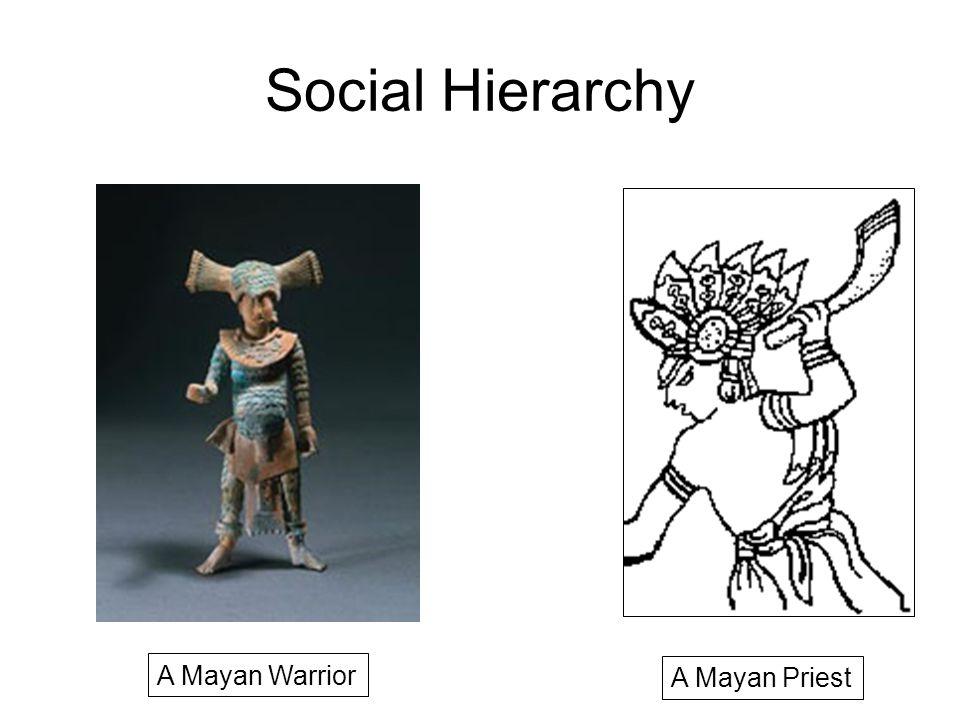 Social Hierarchy A Mayan Priest A Mayan Warrior