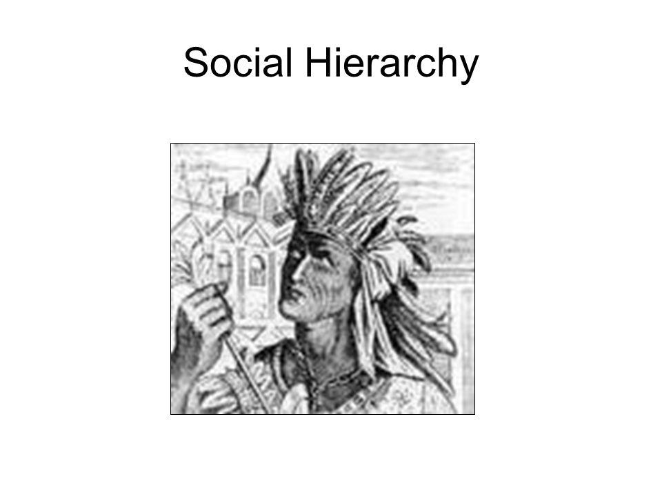 Social Hierarchy
