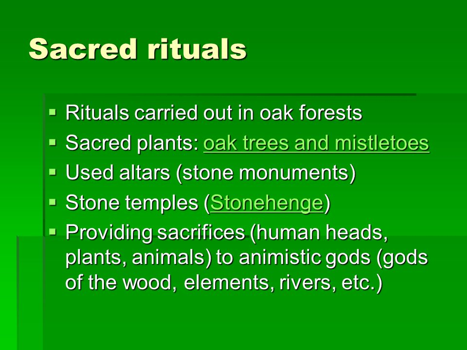 Sacred rituals  Rituals carried out in oak forests  Sacred plants: oak trees and mistletoes oak trees and mistletoesoak trees and mistletoes  Used altars (stone monuments)  Stone temples (Stonehenge) Stonehenge  Providing sacrifices (human heads, plants, animals) to animistic gods (gods of the wood, elements, rivers, etc.)