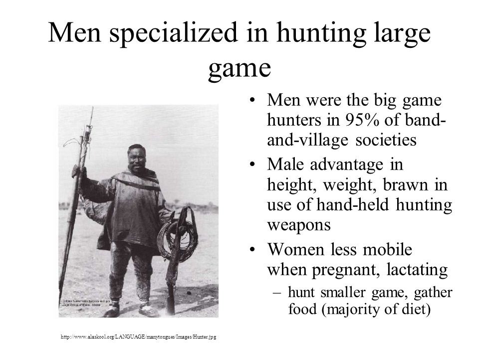 Men specialized in hunting large game Men were the big game hunters in 95% of band- and-village societies Male advantage in height, weight, brawn in use of hand-held hunting weapons Women less mobile when pregnant, lactating –hunt smaller game, gather food (majority of diet) http://www.alaskool.org/LANGUAGE/manytongues/Images/Hunter.jpg