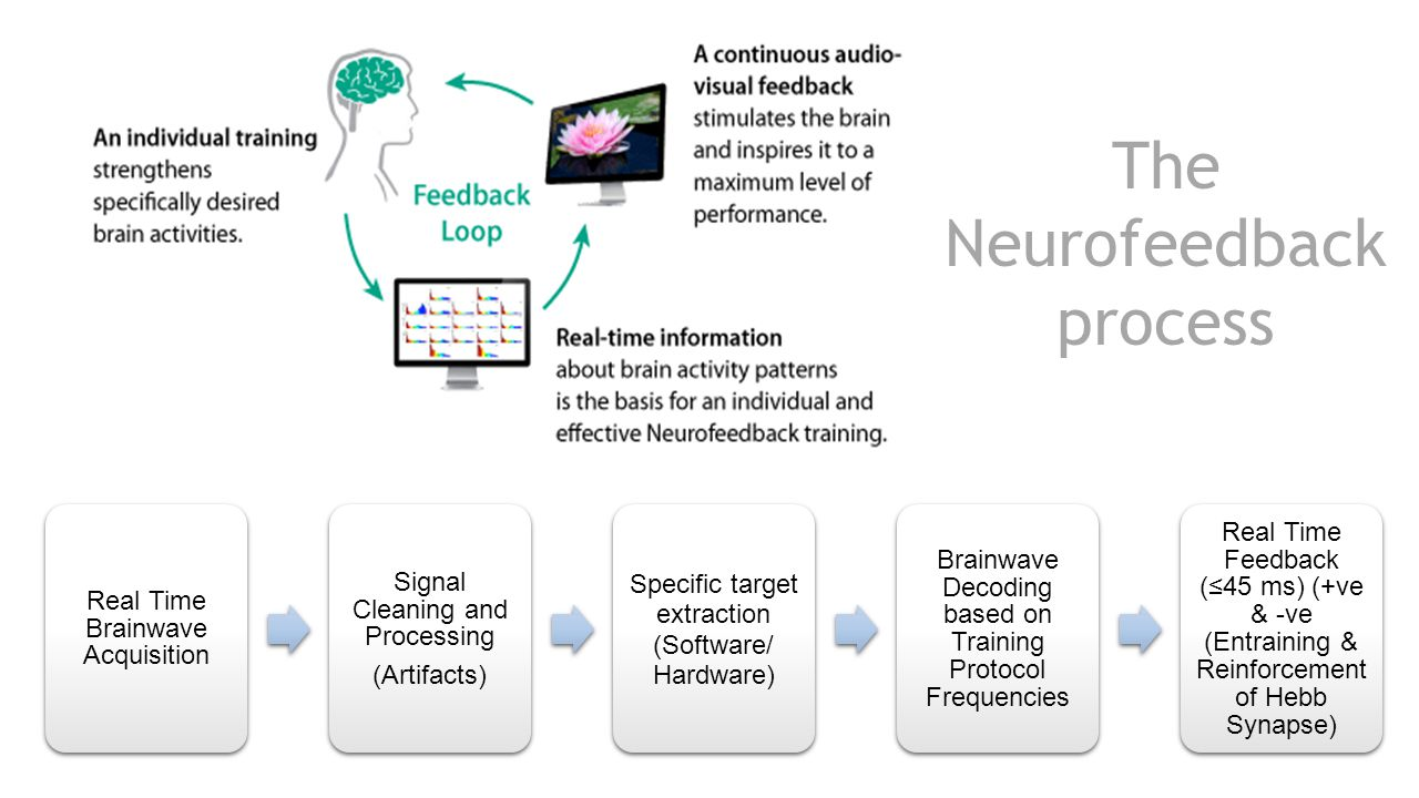 Real Time Brainwave Acquisition Signal Cleaning and Processing (Artifacts) Specific target extraction (Software/ Hardware) Brainwave Decoding based on Training Protocol Frequencies Real Time Feedback (≤45 ms) (+ve & -ve (Entraining & Reinforcement of Hebb Synapse) The Neurofeedback process