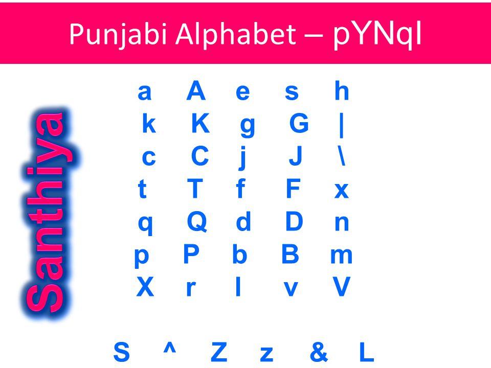 aA esh kKgG| cCjJ\ tTfFx qQdDn p PbBm XrlvV S^Zz&L Punjabi Alphabet – pYNqI