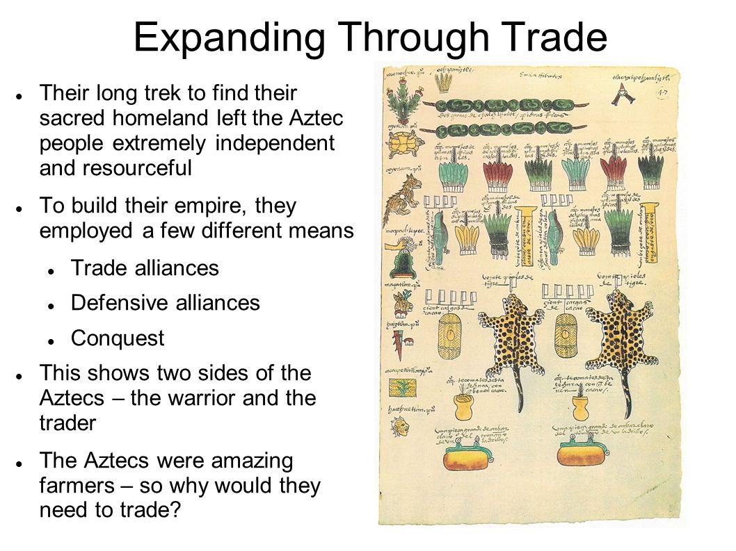 Expanding Through Trade Their long trek to find their sacred homeland left the Aztec people extremely independent and resourceful To build their empire, they employed a few different means Trade alliances Defensive alliances Conquest This shows two sides of the Aztecs – the warrior and the trader The Aztecs were amazing farmers – so why would they need to trade?