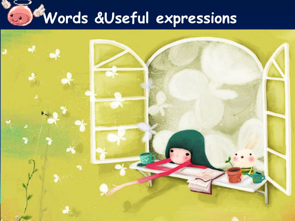 Words &Useful expressions