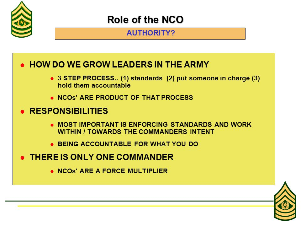 HOW DO WE GROW LEADERS IN THE ARMY 3 STEP PROCESS.. (1) standards (2) put someone in charge (3) hold them accountable NCOs' ARE PRODUCT OF THAT PROCES