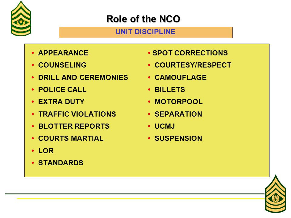 APPEARANCE SPOT CORRECTIONS COUNSELING COURTESY/RESPECT DRILL AND CEREMONIES CAMOUFLAGE POLICE CALL BILLETS EXTRA DUTY MOTORPOOL TRAFFIC VIOLATIONS SEPARATION BLOTTER REPORTS UCMJ COURTS MARTIAL SUSPENSION LOR STANDARDS Role of the NCO Role of the NCO UNIT DISCIPLINE