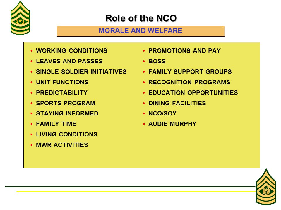 WORKING CONDITIONS PROMOTIONS AND PAY LEAVES AND PASSES BOSS SINGLE SOLDIER INITIATIVES FAMILY SUPPORT GROUPS UNIT FUNCTIONS RECOGNITION PROGRAMS PREDICTABILITY EDUCATION OPPORTUNITIES SPORTS PROGRAM DINING FACILITIES STAYING INFORMED NCO/SOY FAMILY TIME AUDIE MURPHY LIVING CONDITIONS MWR ACTIVITIES Role of the NCO Role of the NCO MORALE AND WELFARE