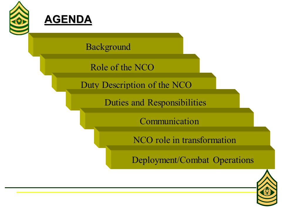 Background AGENDA Role of the NCO Duty Description of the NCO Duties and Responsibilities Communication NCO role in transformation Deployment/Combat Operations