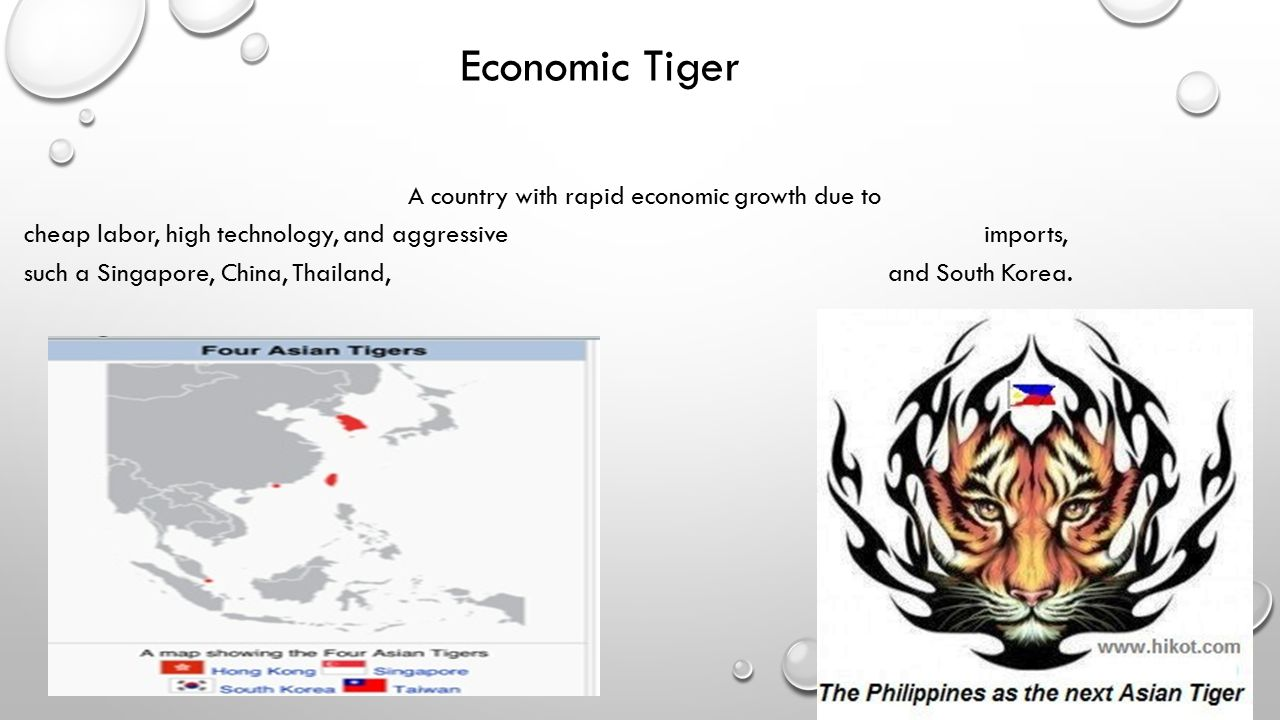Economic Tiger A country with rapid economic growth due to cheap labor, high technology, and aggressive imports, such a Singapore, China, Thailand, and South Korea.