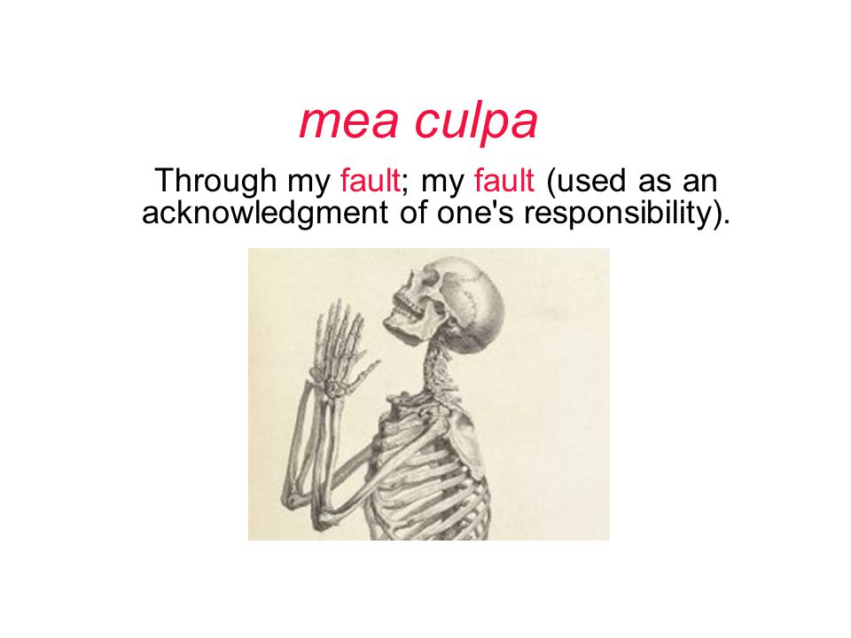 mea culpa Through my fault; my fault (used as an acknowledgment of one s responsibility).
