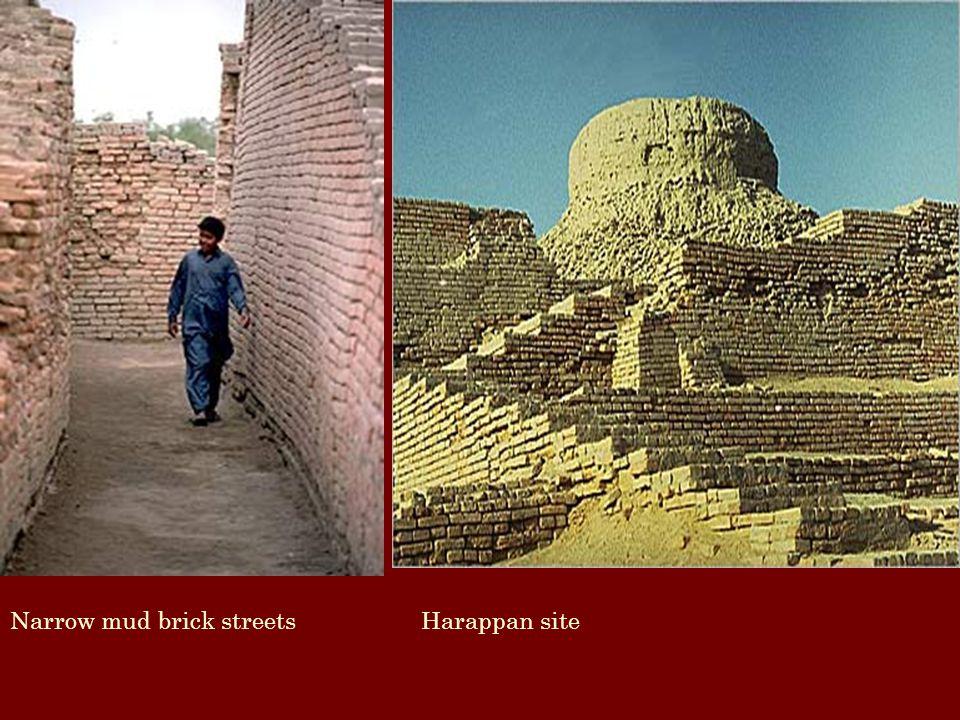 Narrow mud brick streets Harappan site