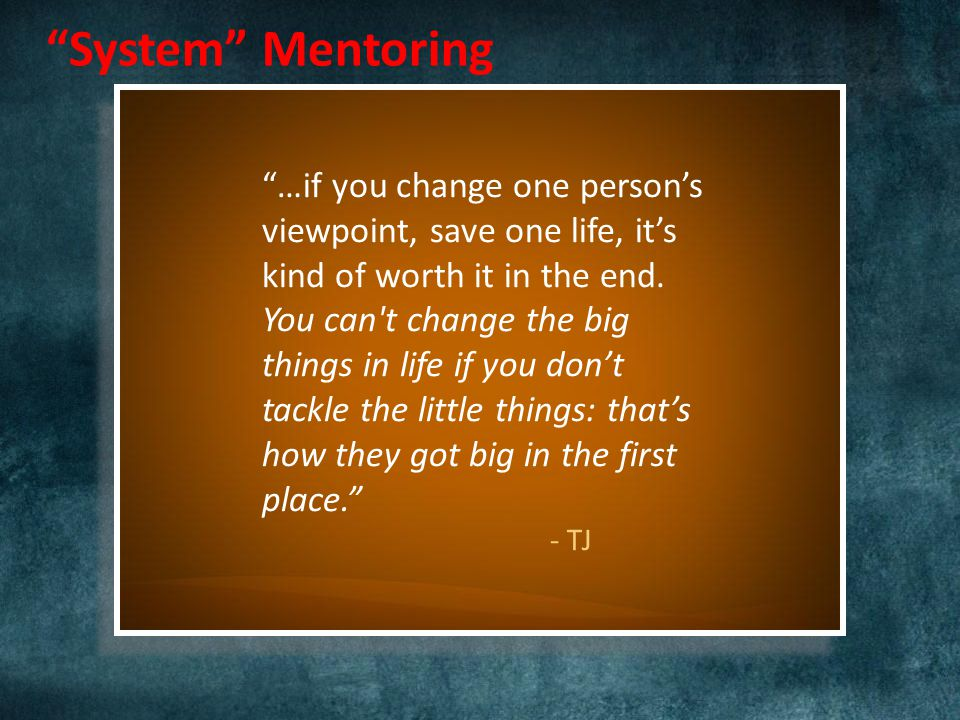 System Mentoring …if you change one person's viewpoint, save one life, it's kind of worth it in the end.