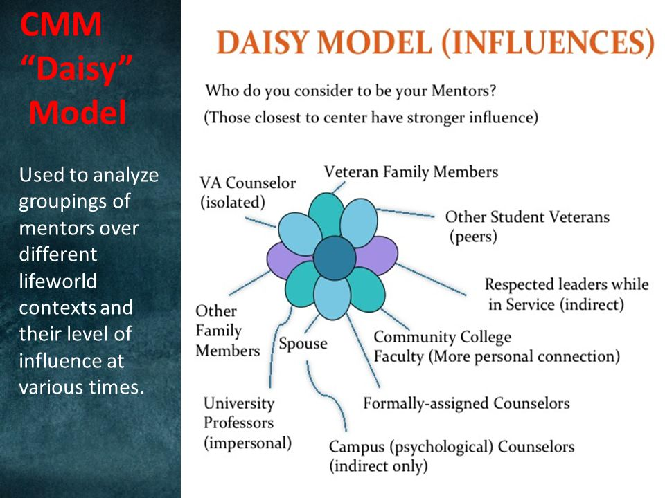 CMM Daisy Model Used to analyze groupings of mentors over different lifeworld contexts and their level of influence at various times.