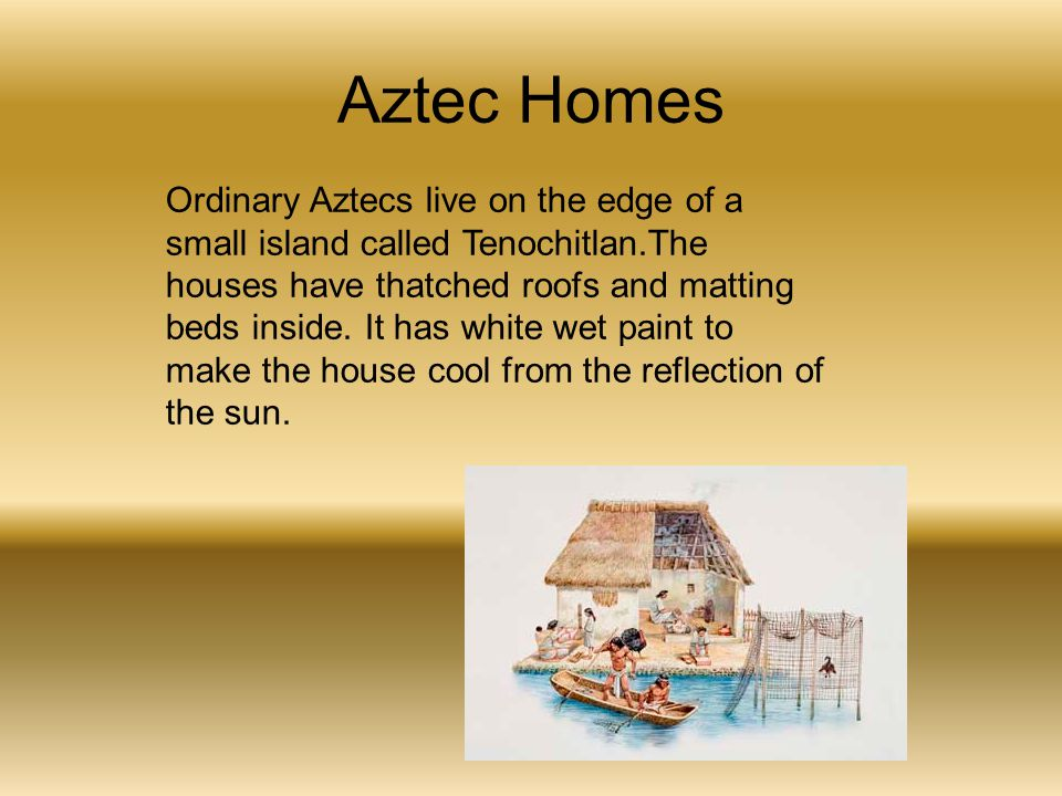 Aztec Homes Ordinary Aztecs live on the edge of a small island called Tenochitlan.The houses have thatched roofs and matting beds inside. It has white