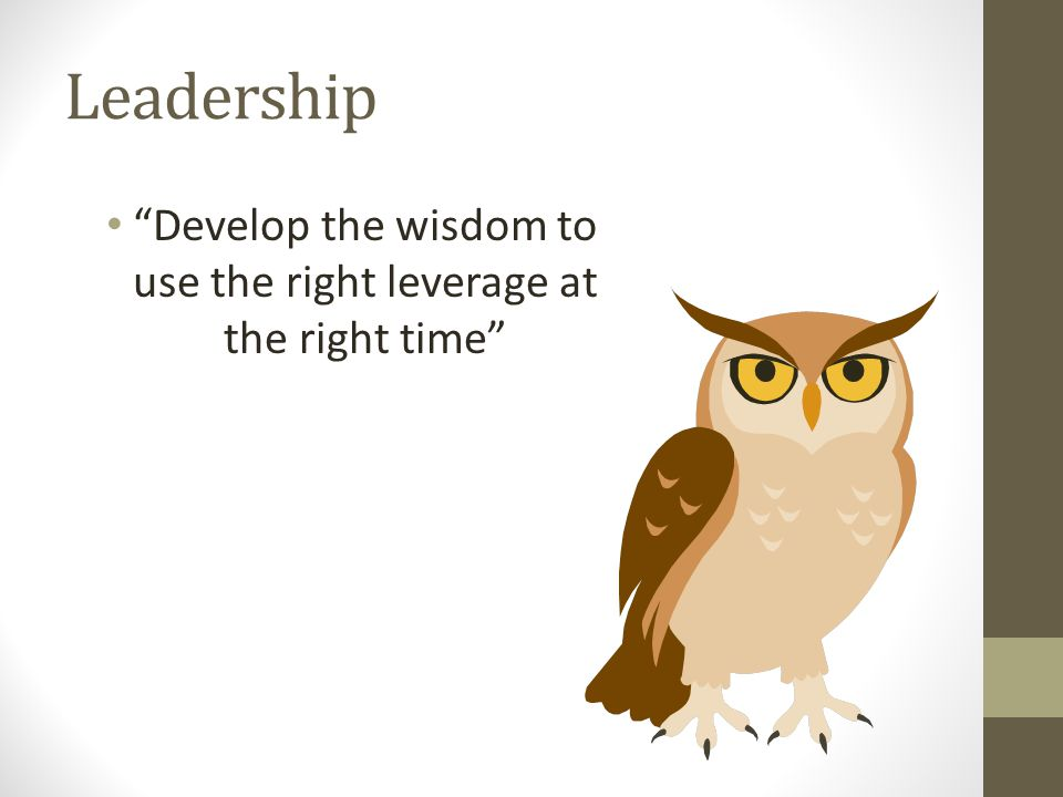 """Leadership """"Develop the wisdom to use the right leverage at the right time"""""""