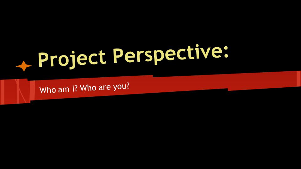 Project Perspective: Who am I Who are you