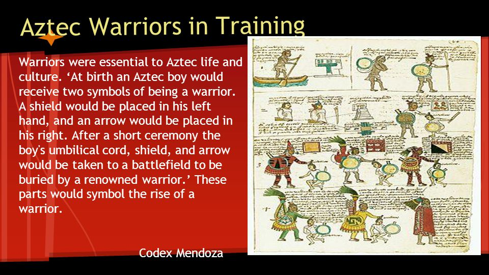 Aztec Warriors in Training Warriors were essential to Aztec life and culture.