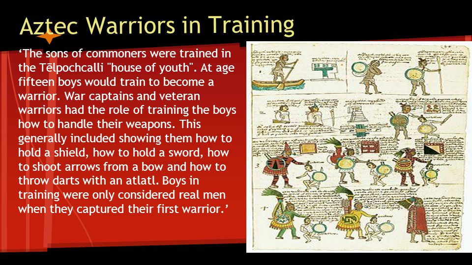 Aztec Warriors in Training 'The sons of commoners were trained in the Tēlpochcalli house of youth .
