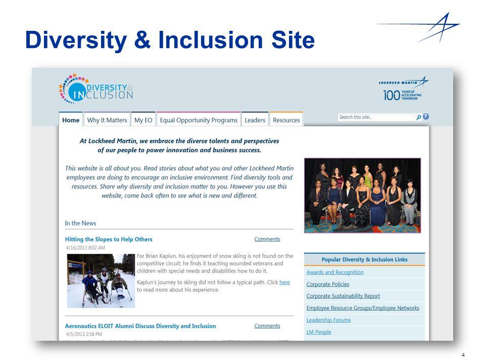 4 Diversity & Inclusion Site