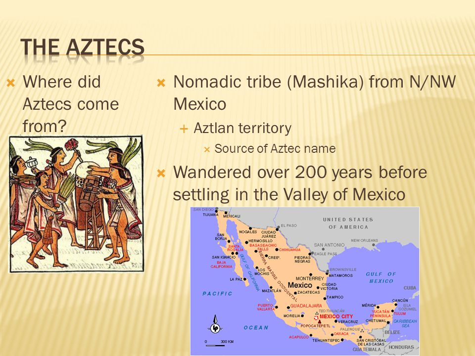  Where did Aztecs come from?  Nomadic tribe (Mashika) from N/NW Mexico  Aztlan territory  Source of Aztec name  Wandered over 200 years before se