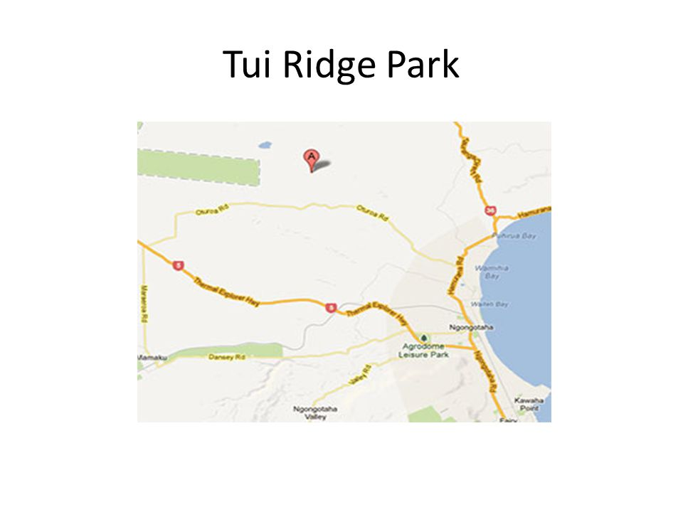 Activities Tui Ridge Park- it s BIG.