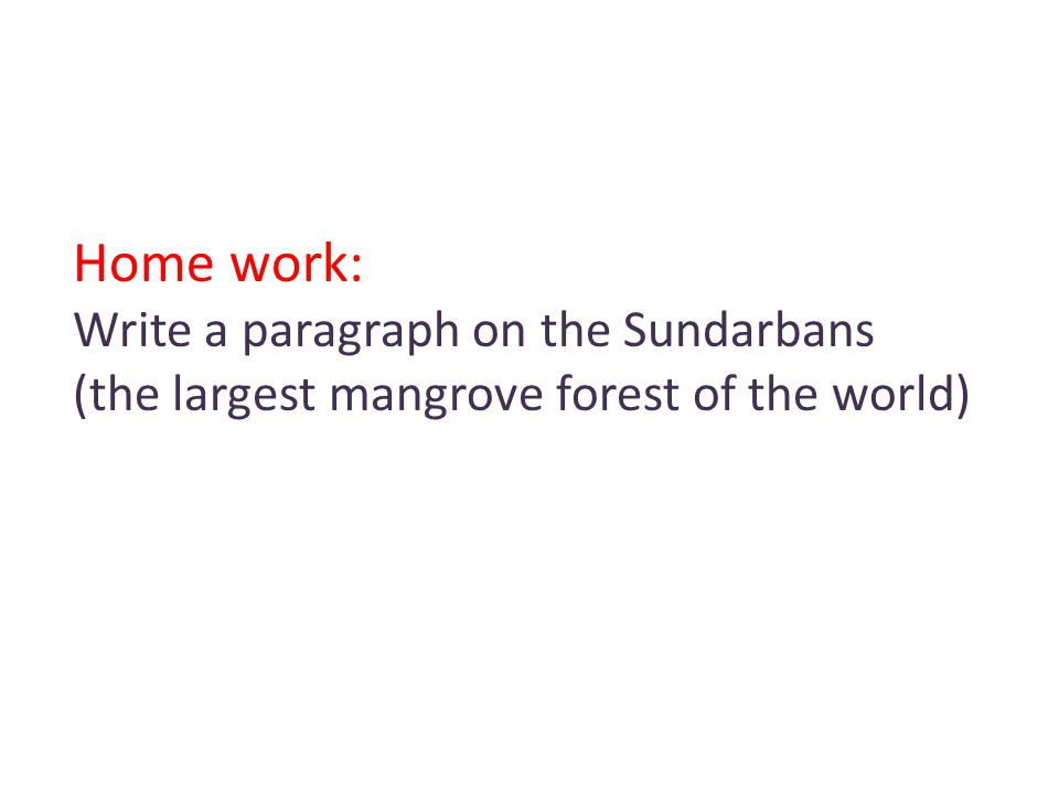 Home work: Write a paragraph on the Sundarbans (the largest mangrove forest of the world)