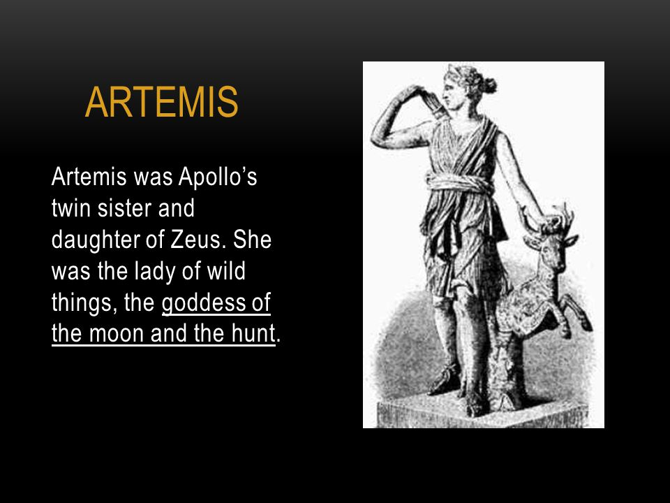 Artemis was Apollo's twin sister and daughter of Zeus.