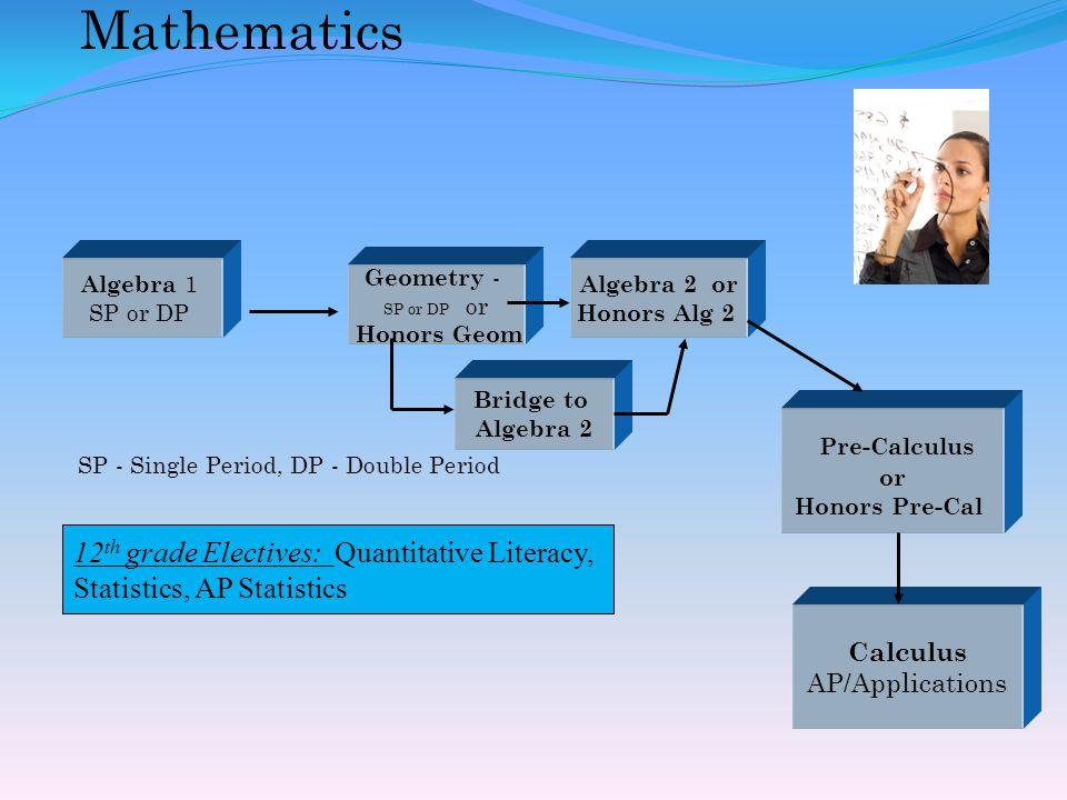 Mathematics Calculus AP/Applications Geometry - SP or DP or Honors Geom Pre-Calculus or Honors Pre-Cal Algebra 2 or Honors Alg 2 SP - Single Period, DP - Double Period 12 th grade Electives: Quantitative Literacy, Statistics, AP Statistics Bridge to Algebra 2 Algebra 1 SP or DP