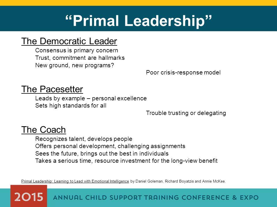 Primal Leadership The Democratic Leader Consensus is primary concern Trust, commitment are hallmarks New ground, new programs.