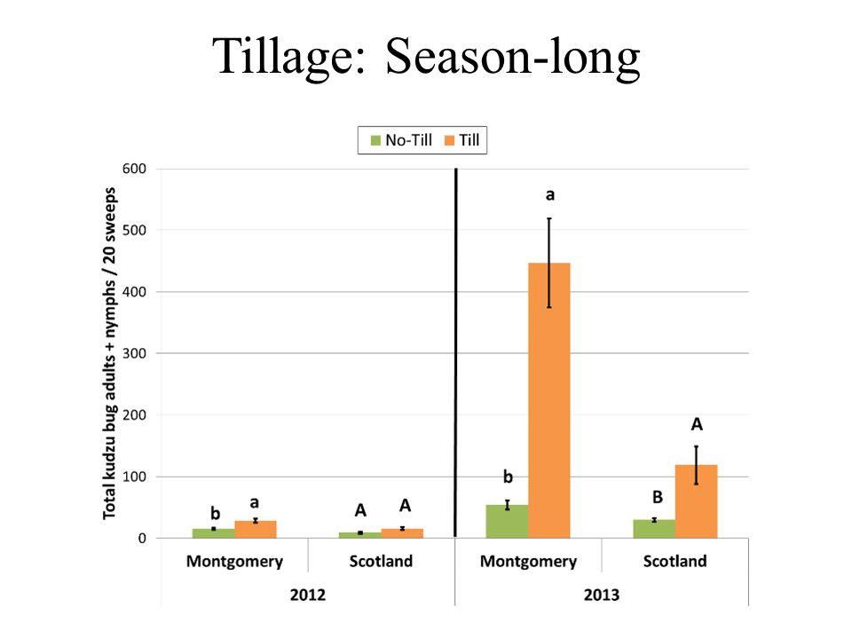 Tillage: Season-long