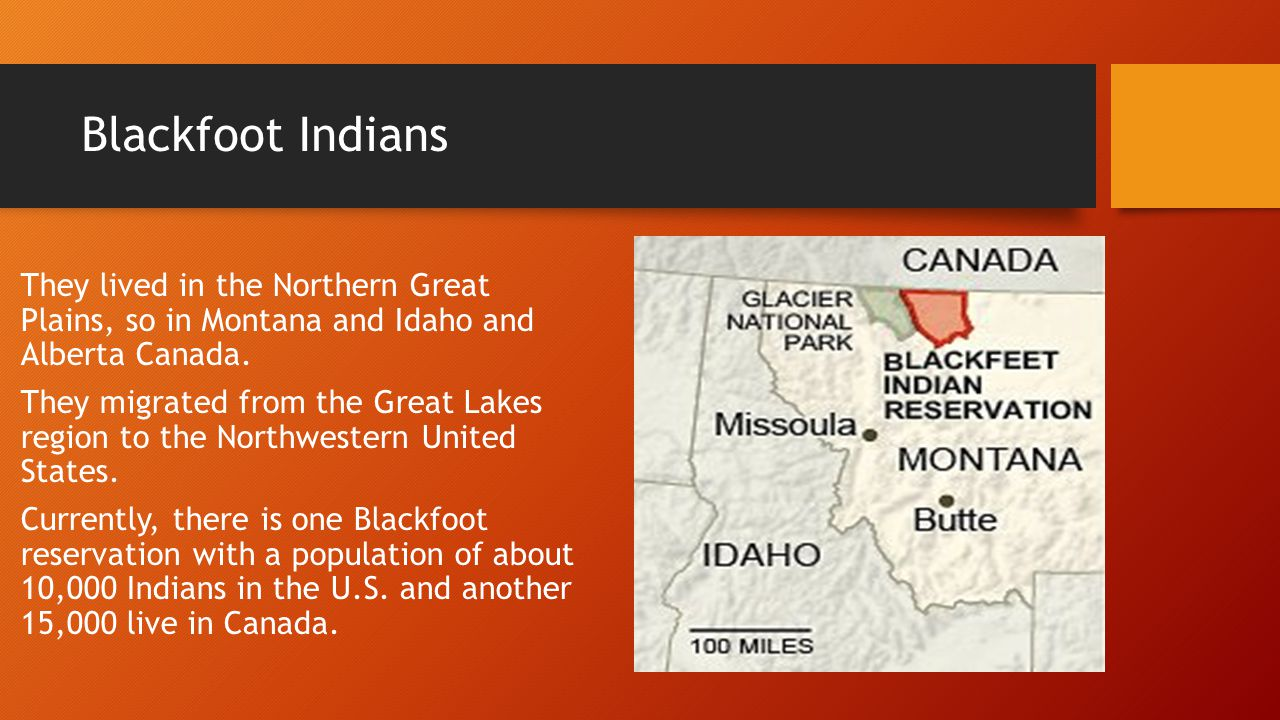 Blackfoot Indians What started out as one nation, evolved over time into four distinct and independent tribes, each with their own government.