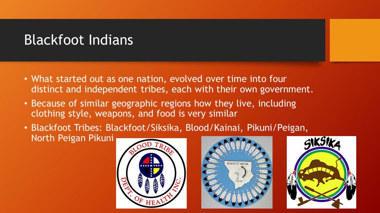 Blackfoot Indians – Main Facts The Blackfoot Indians were skilled huntsmen.