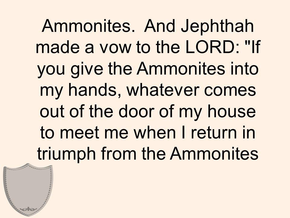 Ammonites.
