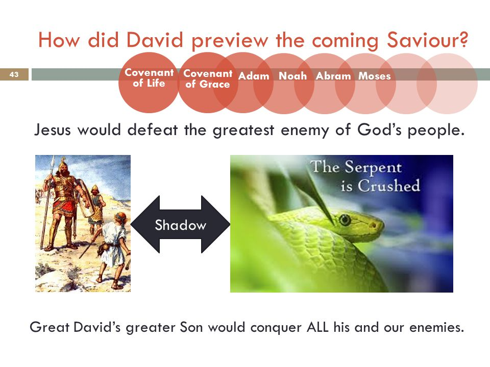 How did David preview the coming Saviour. 43 Jesus would defeat the greatest enemy of God's people.