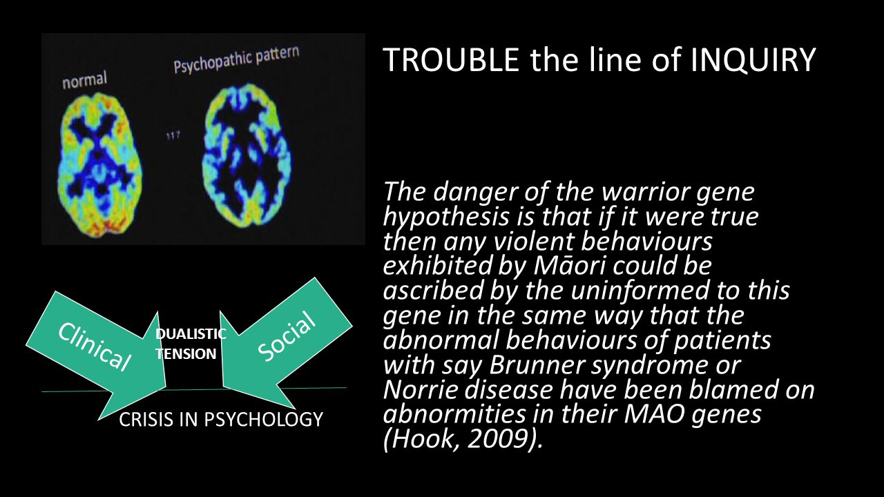 The danger of the warrior gene hypothesis is that if it were true then any violent behaviours exhibited by Māori could be ascribed by the uninformed t