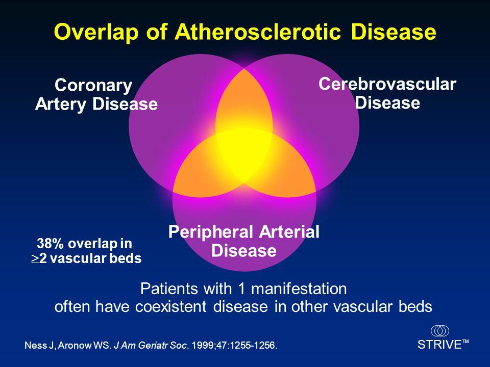 STRIVE TM Overlap of Atherosclerotic Disease Coronary Artery Disease Cerebrovascular Disease Peripheral Arterial Disease Patients with 1 manifestation