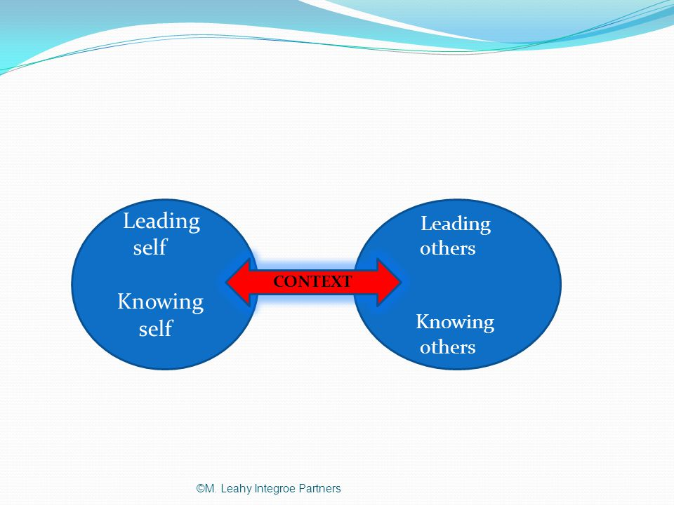 Leading self Knowing self Leading others Knowing others CONTEXT ©M. Leahy Integroe Partners