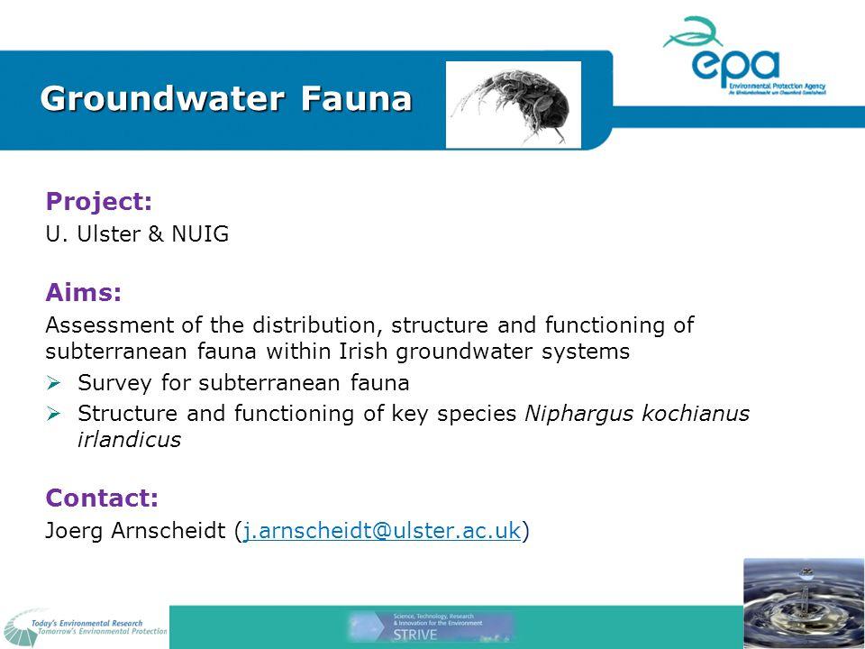 Groundwater Fauna Project: U.