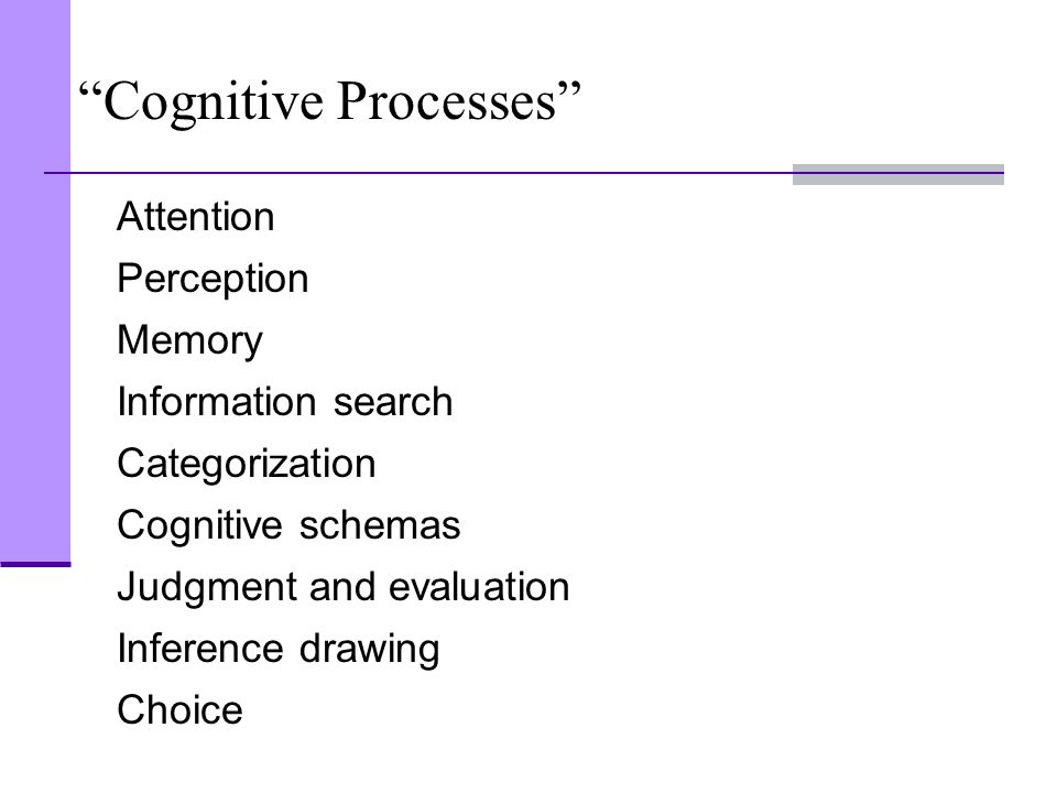 """Cognitive Processes"" Attention Perception Memory Information search Categorization Cognitive schemas Judgment and evaluation Inference drawing Choice"