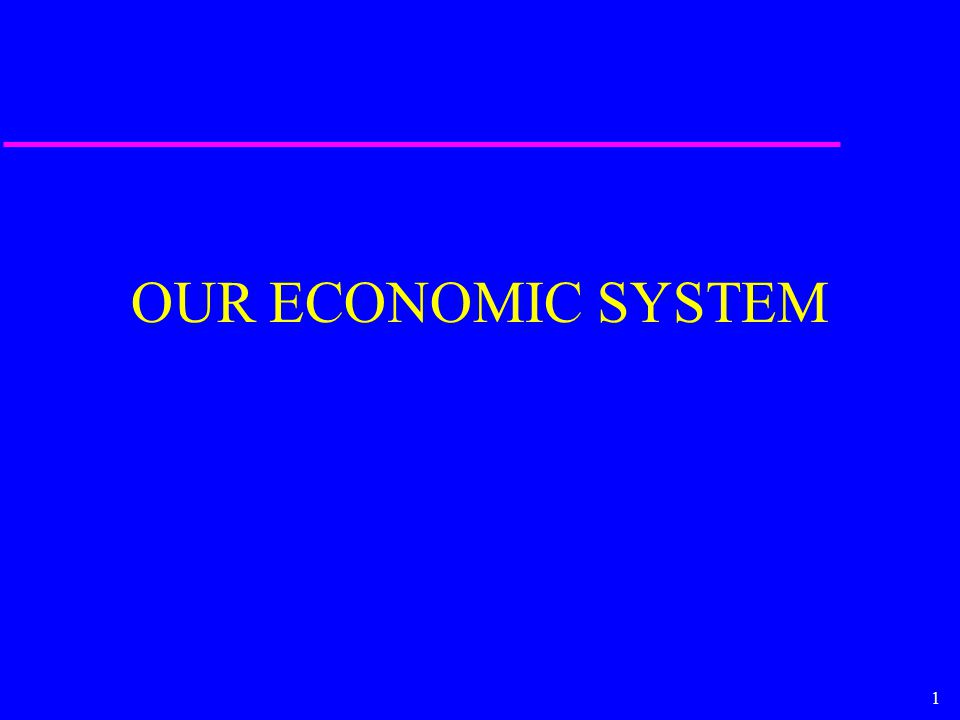 1 OUR ECONOMIC SYSTEM