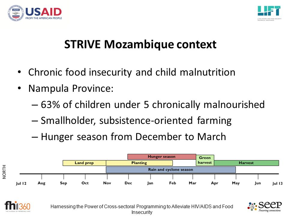 Harnessing the Power of Cross-sectoral Programming to Alleviate HIV/AIDS and Food Insecurity STRIVE Mozambique context Chronic food insecurity and child malnutrition Nampula Province: – 63% of children under 5 chronically malnourished – Smallholder, subsistence-oriented farming – Hunger season from December to March