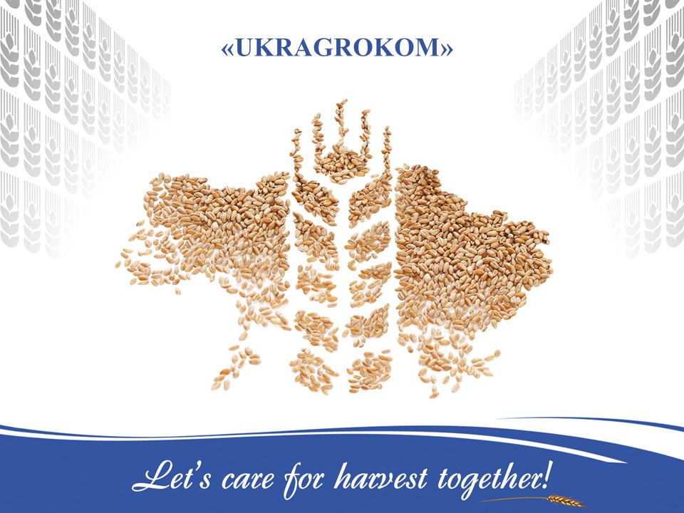«Ukragrokom» - one of the largest companies of the Ukrainian agrarian market Products: Crop-Protection Agents Seeds Aqueous Fertilizers Mineral Fertilizers Services: Agronomic Support Agrochemical Analysis of Soils «Ukragrokom»: Experience - 12 years Number of employees – 150 persons 9 representative offices: Kyiv, Kharkov, Cherkassy, Dnepropetrovsk, Poltava, Kherson, Henichesk, Lutsk, Ternopol 12 stores Mineral fertilizers pre-packing base in Cherkassy city Customers – 1,5 ths.