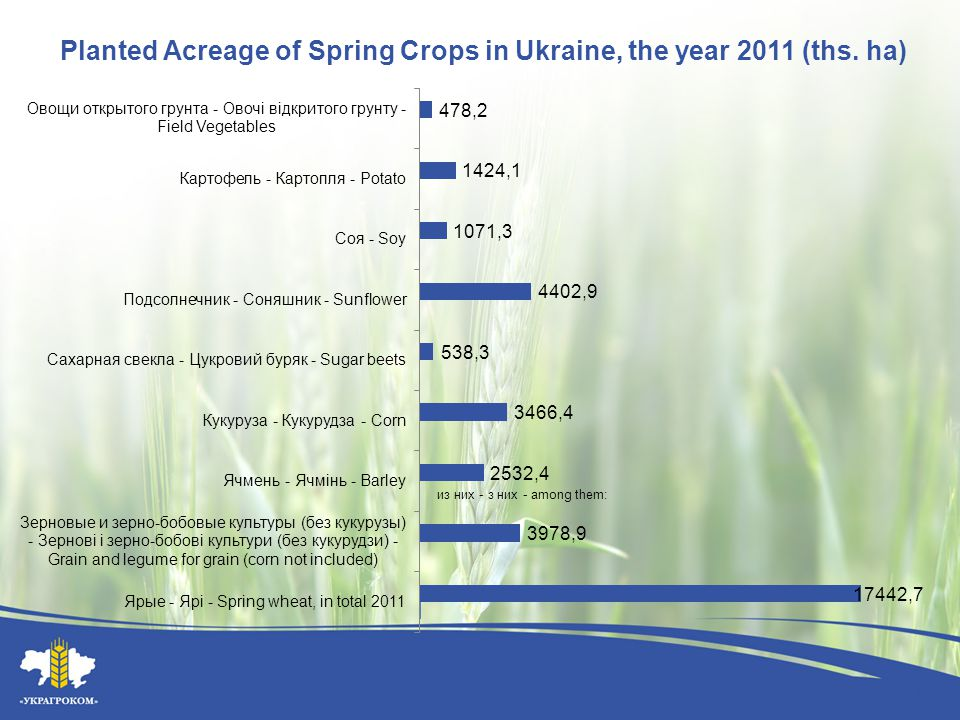 Planted Acreage of Spring Crops in Ukraine, the year 2011 (ths. hа)