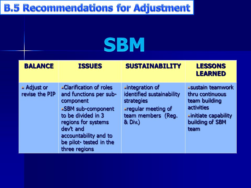 BALANCEISSUESSUSTAINABILITY LESSONS LEARNED Adjust or revise the PIP Adjust or revise the PIP Clarification of roles and functions per sub- component