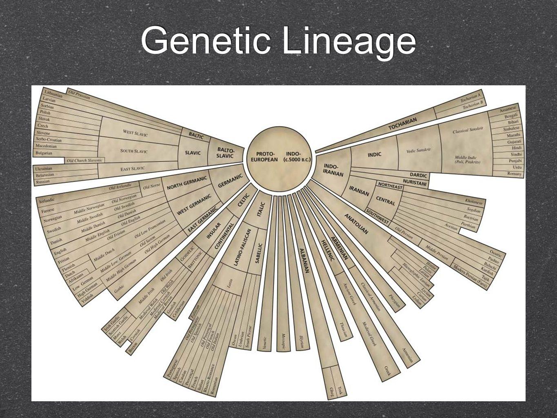 Genetic Lineage