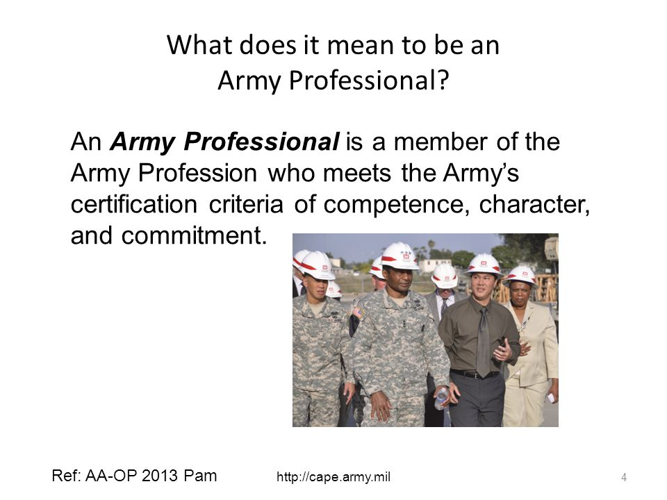 What does it mean to be an Army Professional.